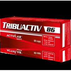 Купить Activlab Tribuactiv B6 60капс в Луганске и ЛНР