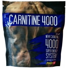 Power Pro Carnitine 4000, 500грамм